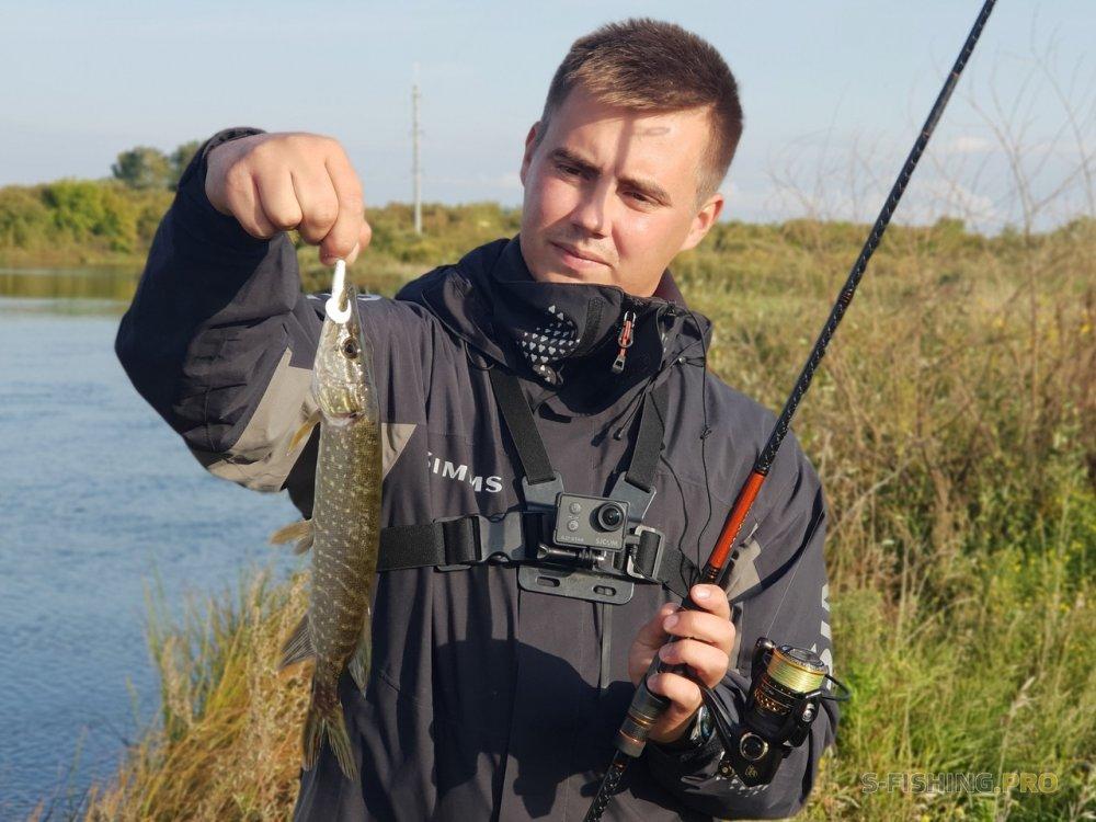 Отчеты с водоемов: 3 рыбы – 3 вида