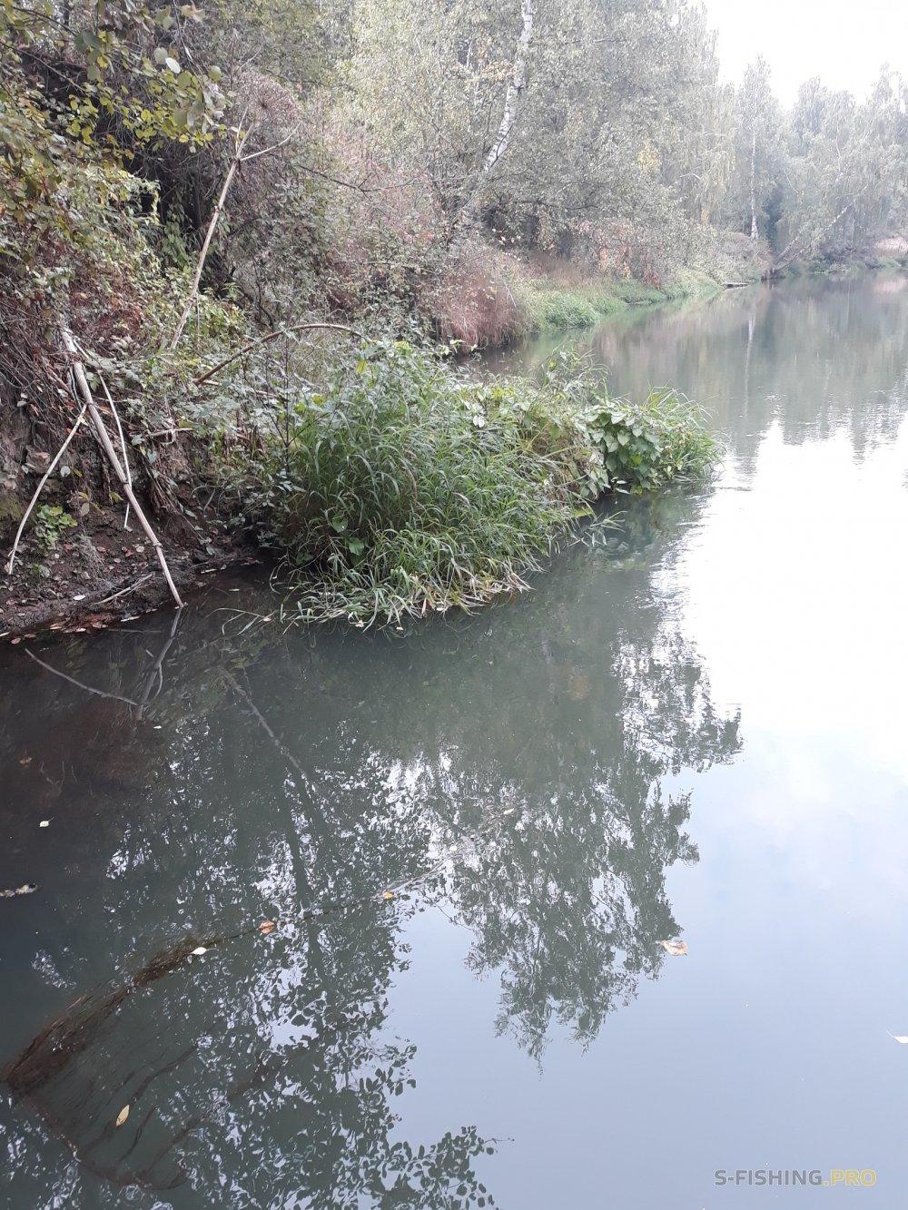 Отчеты с водоемов: Осенние голавлики