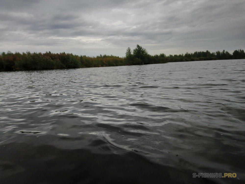 Отчеты с водоемов: Проверка нового места.