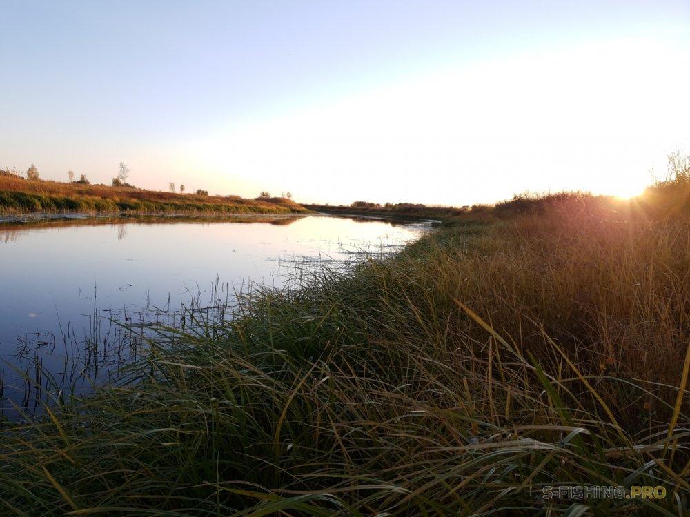 Отчеты с водоемов: Полосатый вечер