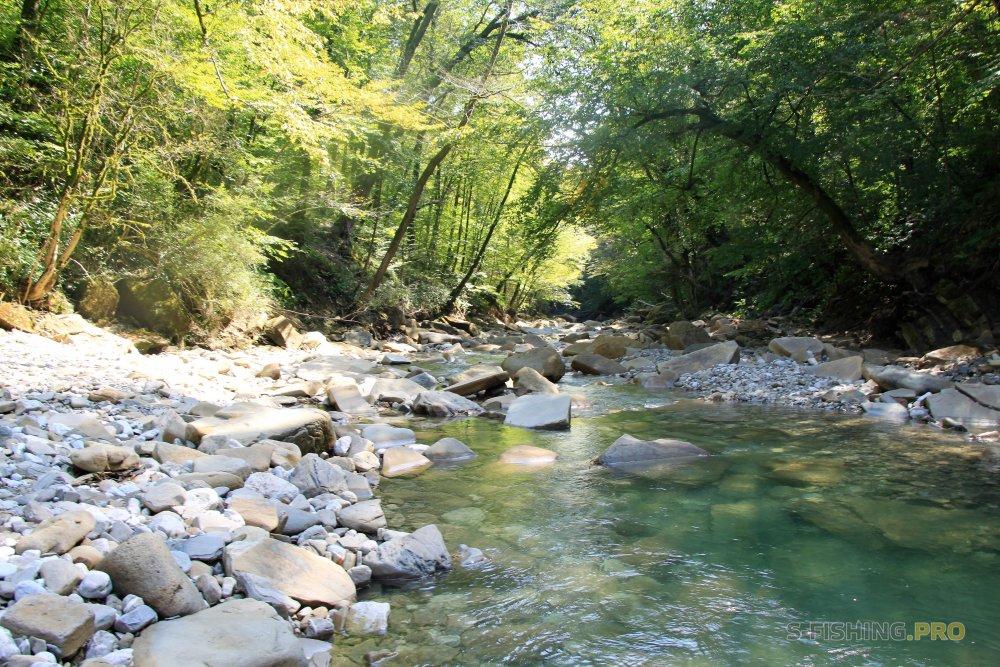 Отчеты с водоемов: Кавказкий голавль в ударе (часть II)