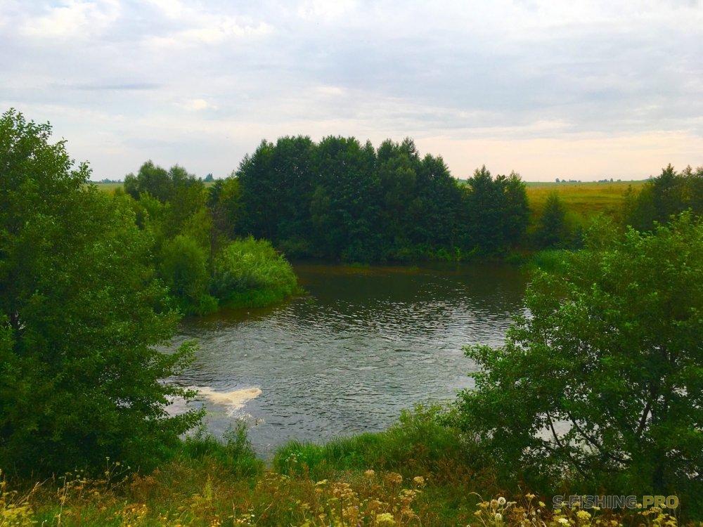 Отчеты с водоемов: Рязанский голавль 2018