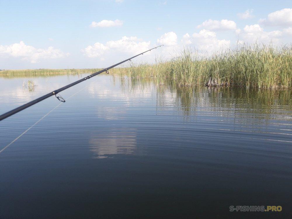 EcoGroup - эксклюзивный представитель брендов Maximus, Alaskan, LureMax, PowerPhantom, BlackSide, EcoPro, Saykio: MAXIMUS GRAVITY мои вречатления и немного рыбалки