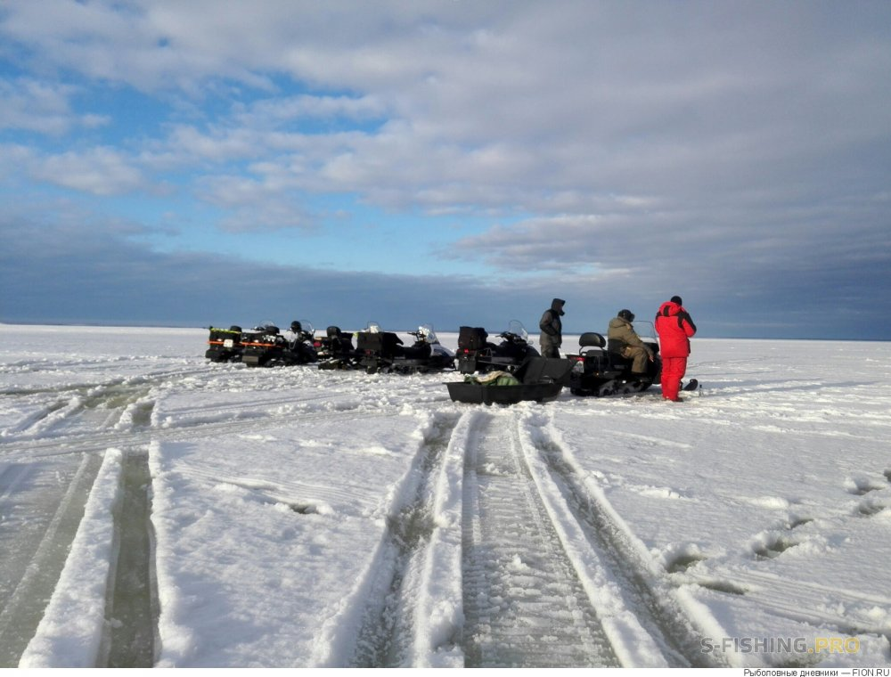 Блог им. motor37: Отчет о рыбалке: 04 марта 2017 - 05 марта 2017, Волга (Горьковское водохранилище)