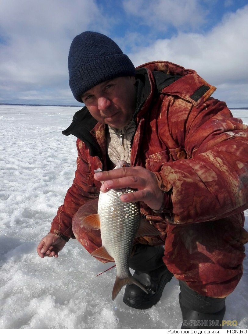 Отчеты с водоемов: Отчет о рыбалке: 25 марта 2017 - 26 марта 2017, Волга (Горьковское водохранилище)