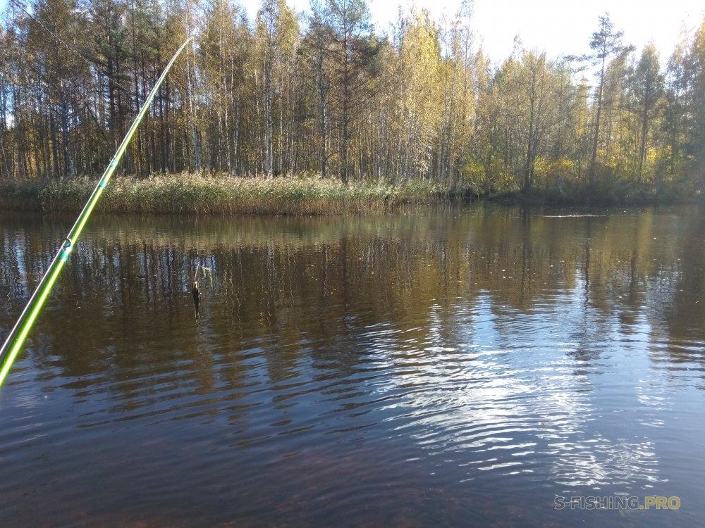 World Fishing Tackle: Мечтай – мечты имеют свойство сбываться (часть 1)