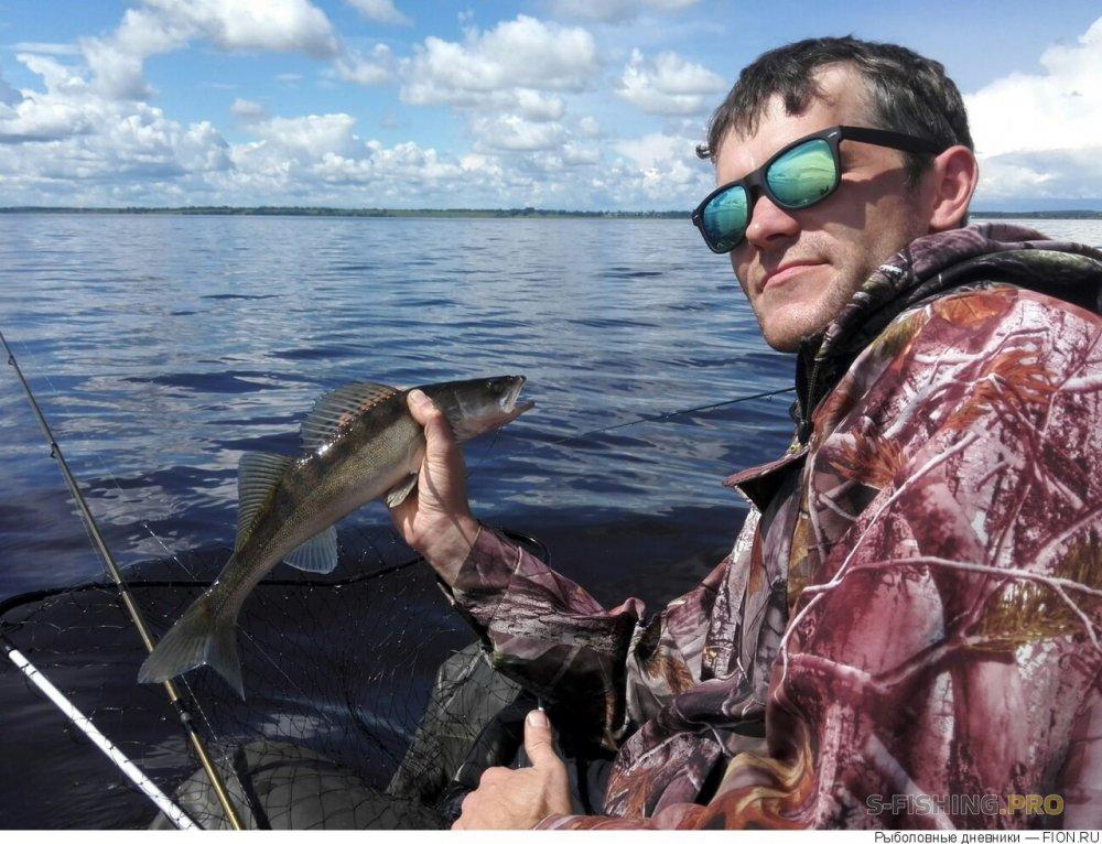Отчеты с водоемов: Отчет о рыбалке: 08 июля 2017 - 09 июля 2017, Волга (Горьковское водохранилище)