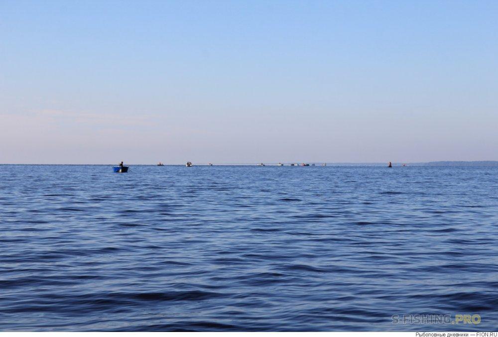 Отчеты с водоемов: Отчет о рыбалке: 22 июля 2017 - 23 июля 2017, Волга (Горьковское водохранилище)