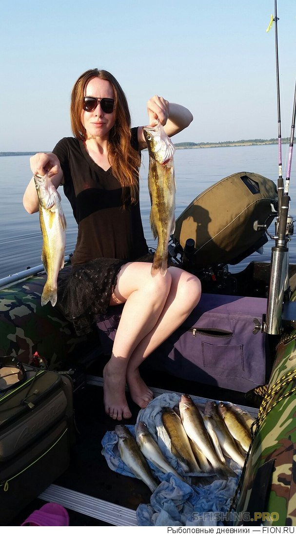 Отчеты с водоемов: Отчет о рыбалке: 19 августа 2017 - 23 августа 2017, Волга (Ивановская обл.)