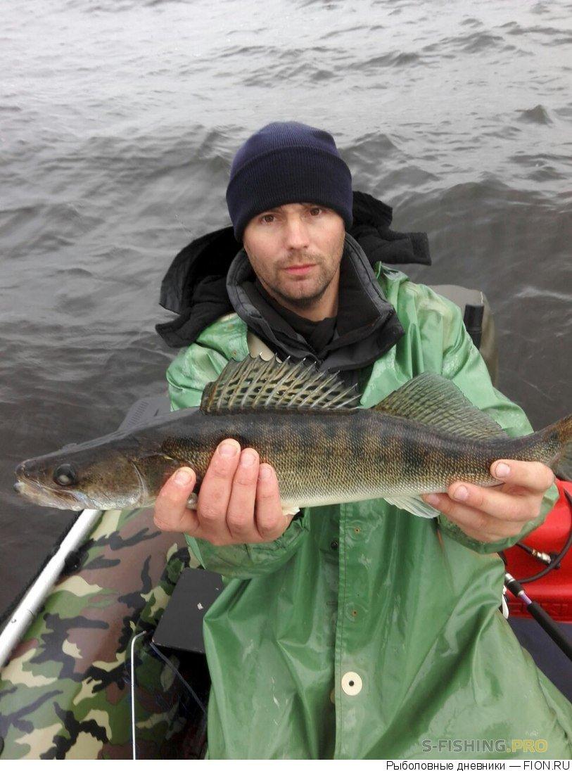 Отчеты с водоемов: Отчет о рыбалке: 15 октября 2017 - 15 октября 2017, Волга (Горьковское водохранилище)