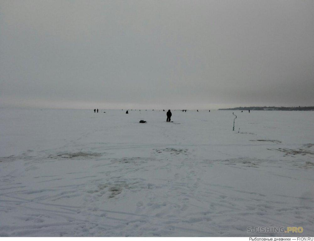 Отчеты с водоемов: Отчет о рыбалке: 23 декабря 2017 - 23 декабря 2017, Волга (Пучеж)