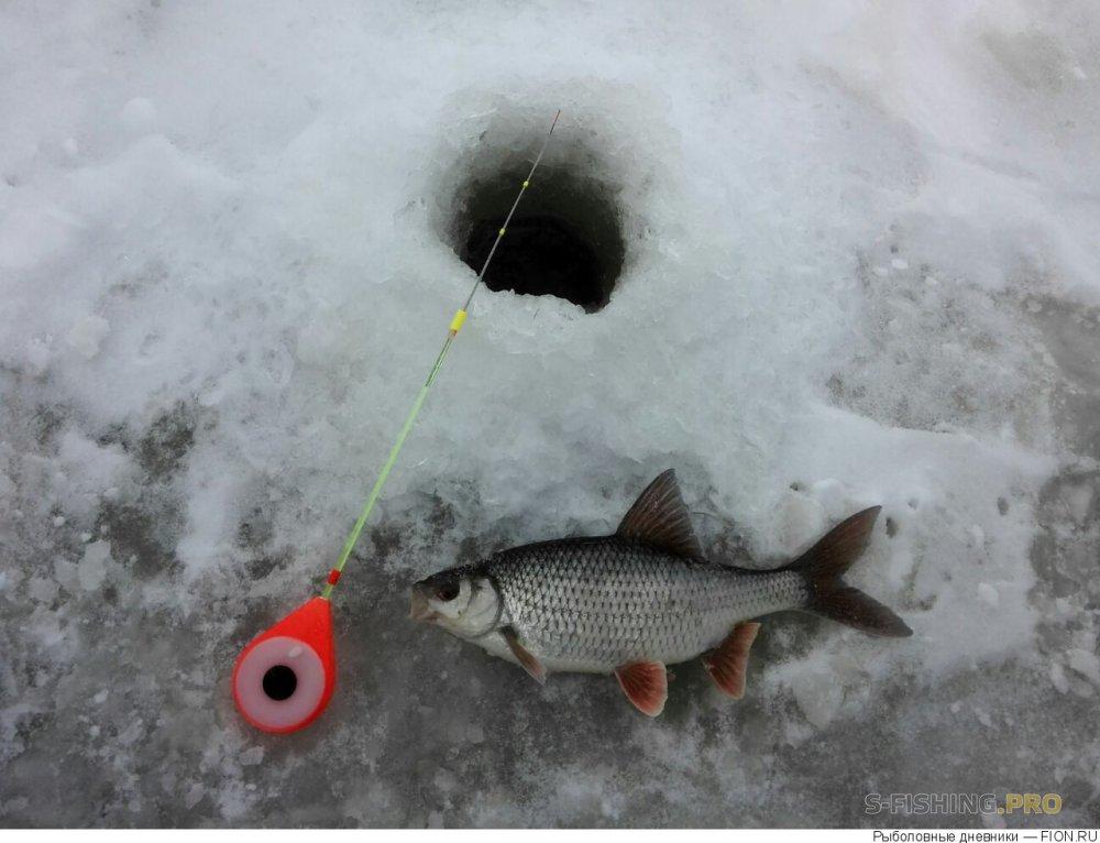 Отчеты с водоемов: Отчет о рыбалке: 20 января 2018 - 21 января 2018, Волга (Пучеж)