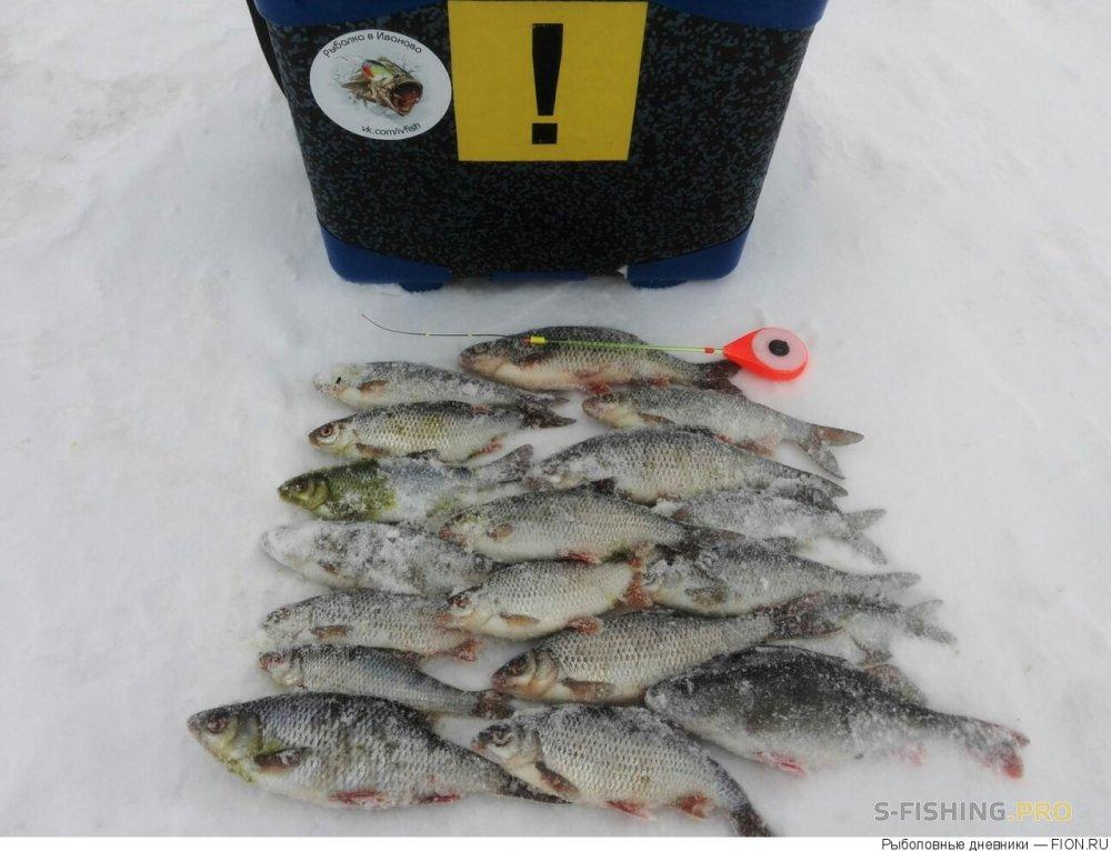 Отчеты с водоемов: Отчет о рыбалке: 03 февраля 2018 - 04 февраля 2018, Волга (Юрьевец)