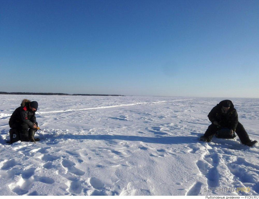 Отчеты с водоемов: Отчет о рыбалке: 09 марта 2018 - 11 марта 2018, Волга (Юрьевец)