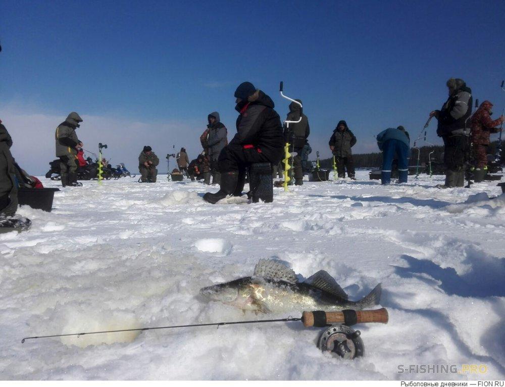 Отчеты с водоемов: Отчет о рыбалке: 17 марта 2018 - 18 марта 2018, Волга (Юрьевец)