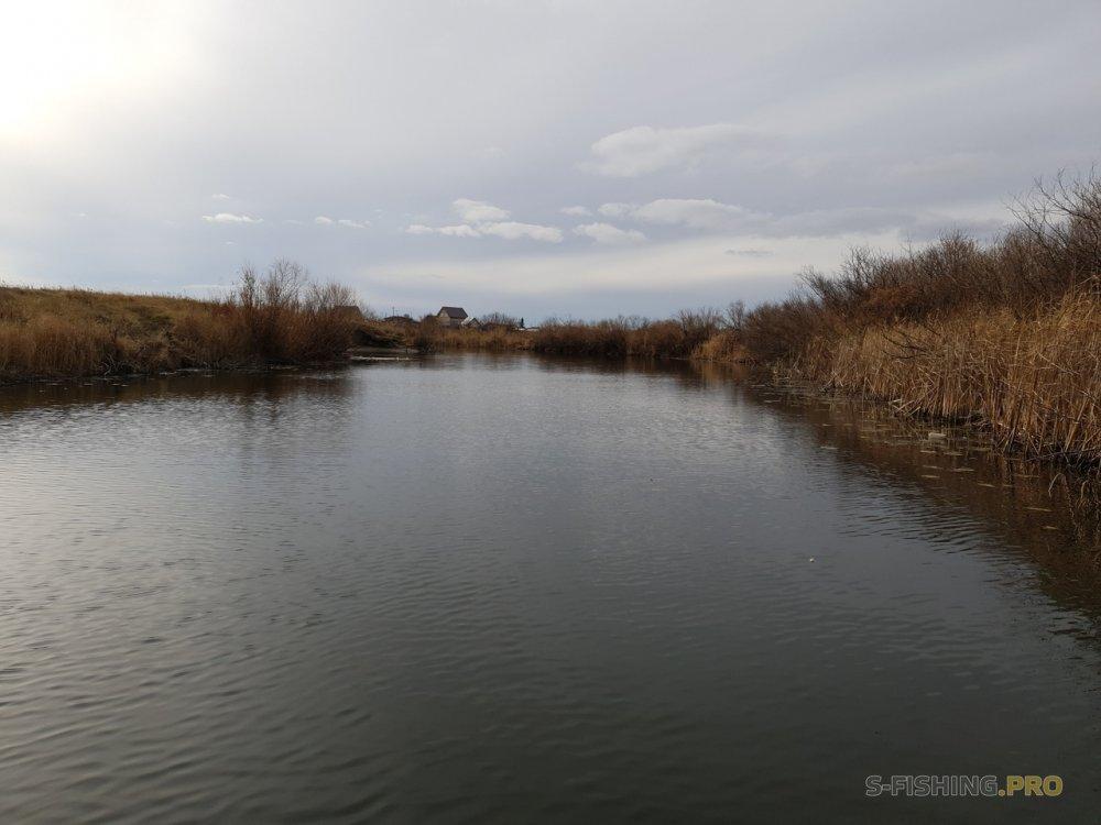 Отчеты с водоемов: Старания вознаграждены