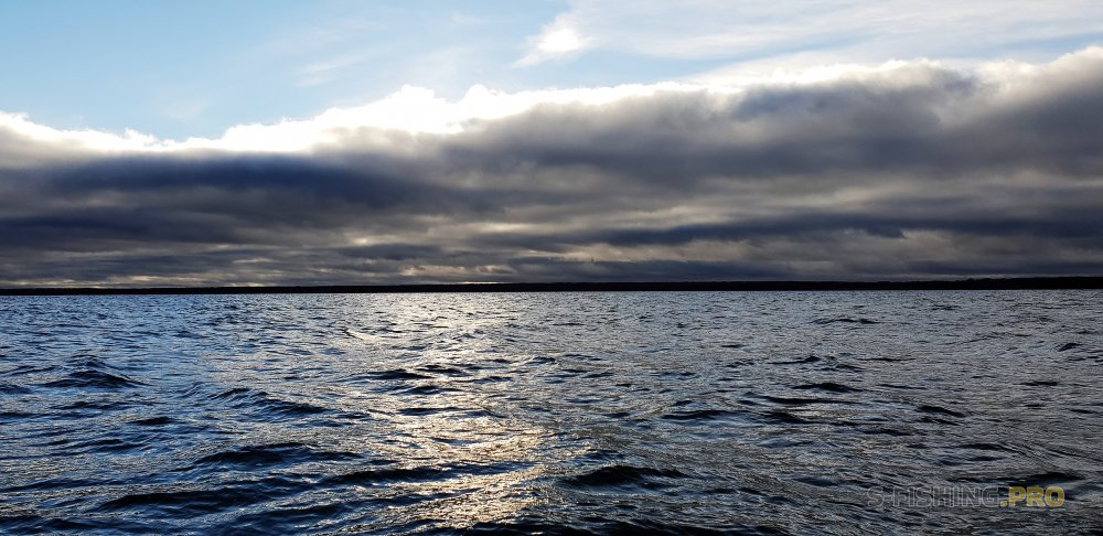 Отчеты с водоемов: И снова Яузское водохранилище ...