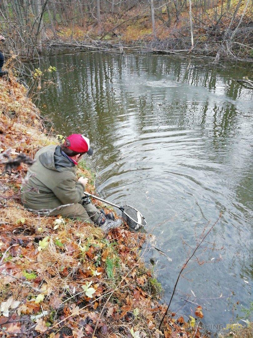 Отчеты с водоемов: Закрытие сезона