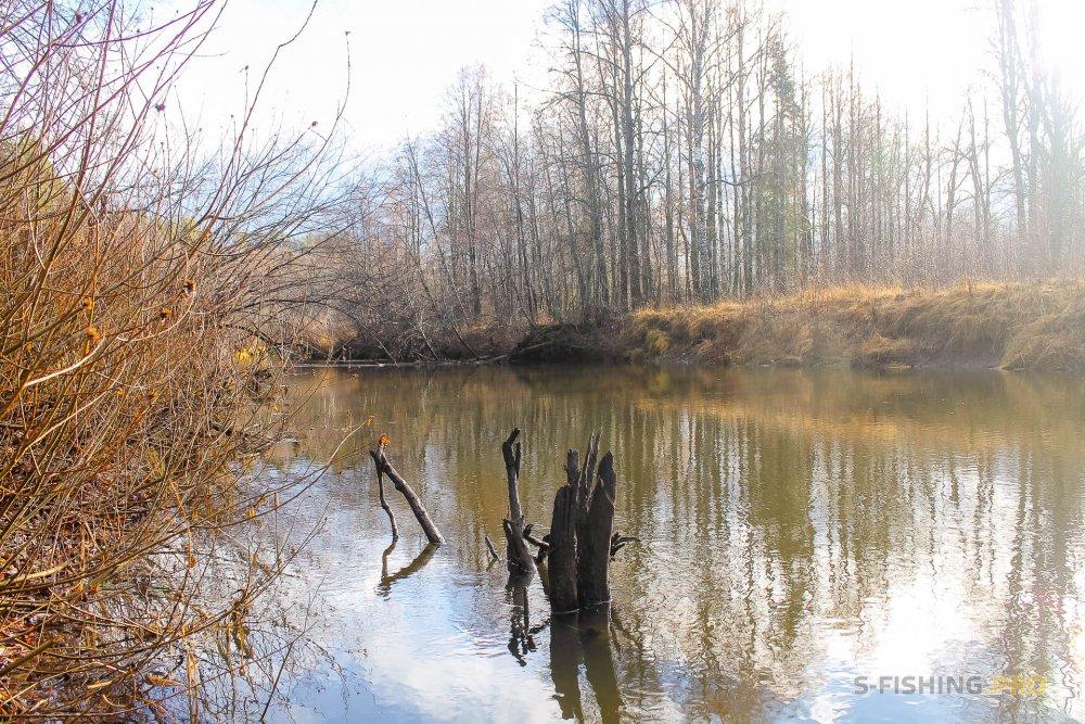 Отчеты с водоемов: За щукой по малым рекам