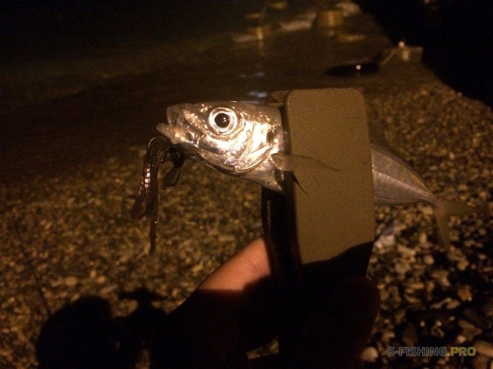 Микроджиг и все что с ним связано: LureMax Kraken – хозяин водных глубин