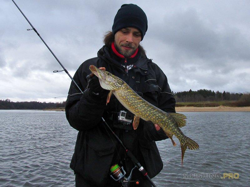 Отчеты с водоемов: Зима близко, 10-11.11.18