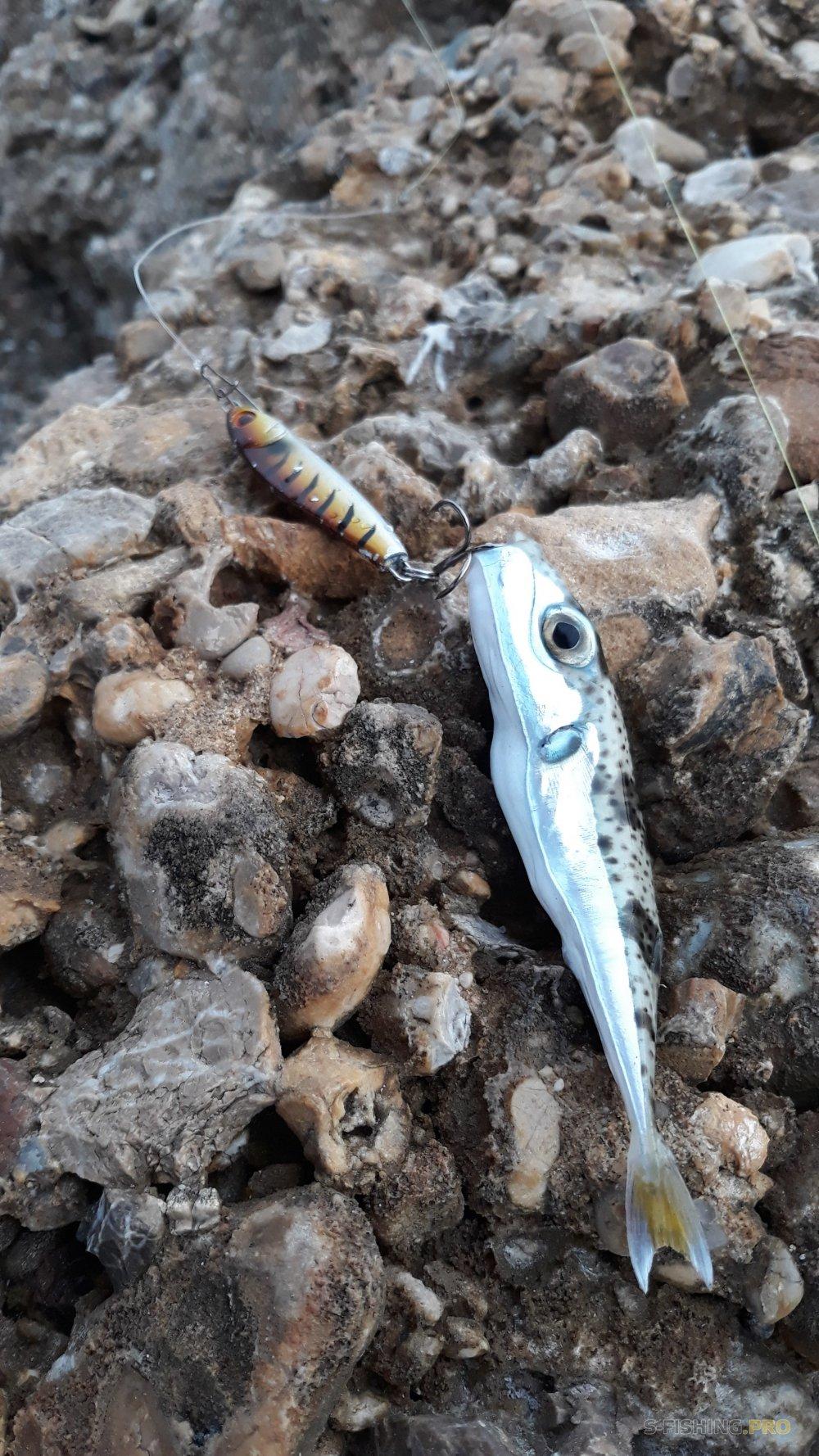 Отчеты с водоемов: Рыбалка на Анталийском побережье, часть 2