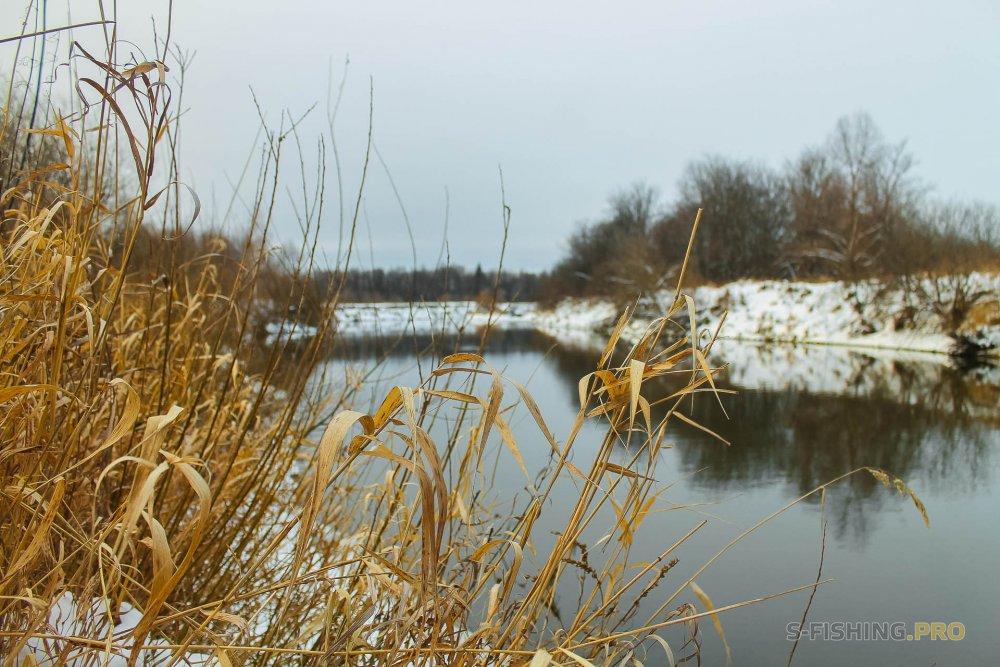 Отчеты с водоемов: Зима — время для дропшота