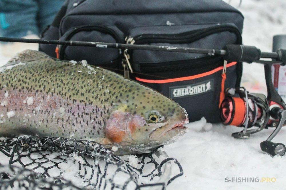 Отчеты с водоемов: Отдых совмещненный с рыбалкой