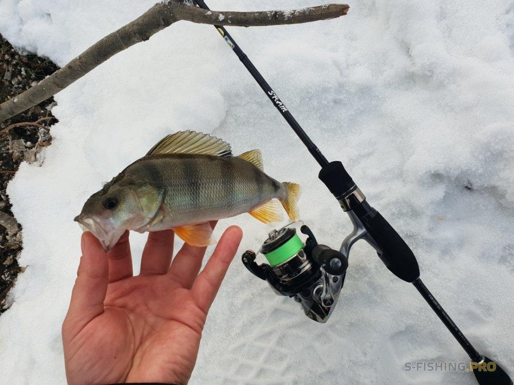 Отчеты с водоемов: Удачная рыбалка на зимней реке