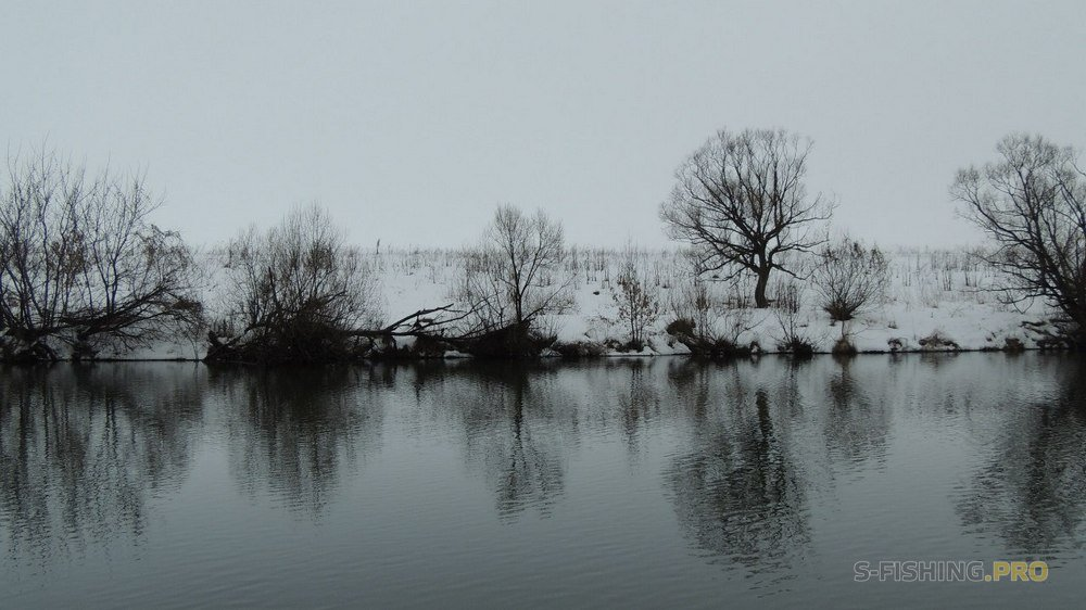 Блог им. Volodya: Трофейный судак на спиннинг зимой