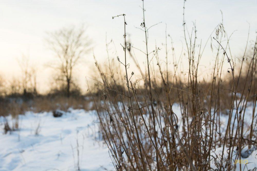 Отчеты с водоемов: Мороз, солнце, зимний спиннинг.