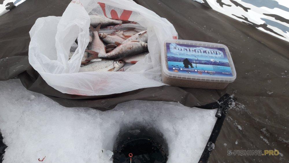 Отчеты с водоемов: Первый день отпуска на рыбалке