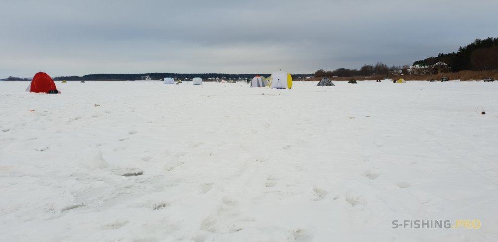 Отчеты с водоемов: Лещовое нашествие. Белгородское вдхр. (Январь 2018)