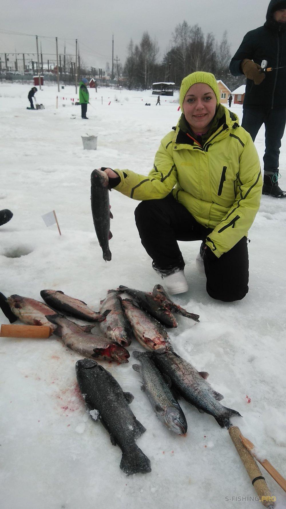 EcoGroup - эксклюзивный представитель брендов Maximus, Alaskan, LureMax, PowerPhantom, BlackSide, EcoPro, Saykio: Как без красной рыбы в Новый год!?