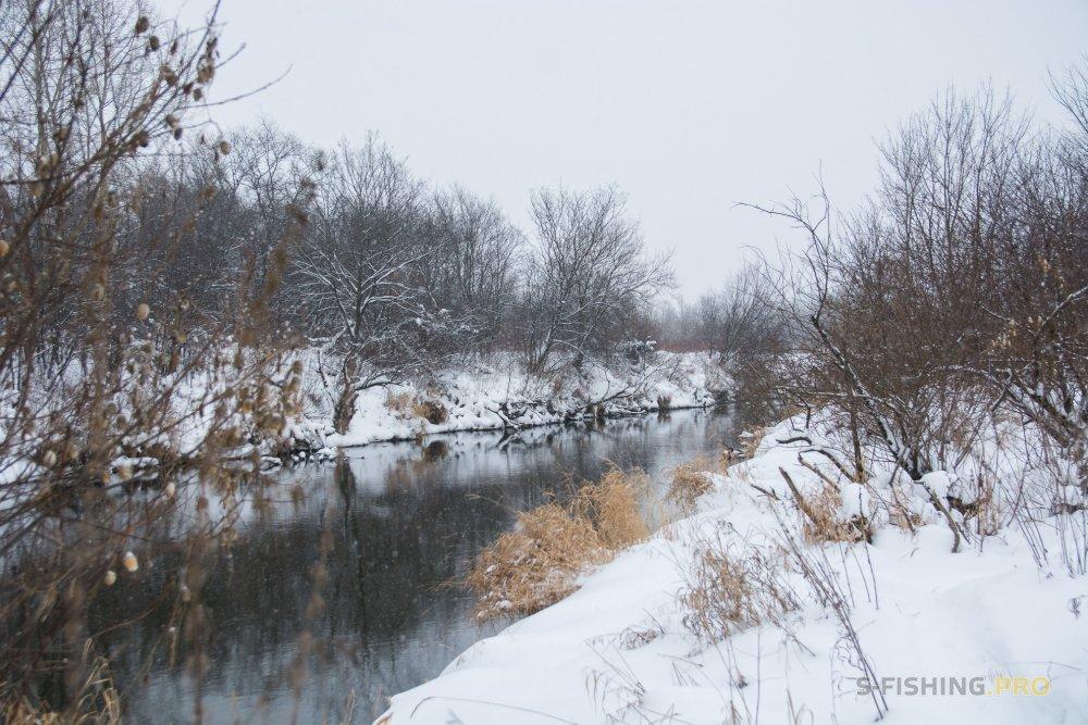 Отчеты с водоемов: Странное что-то творится на реке.