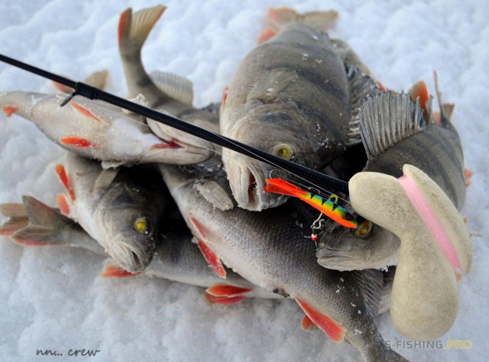 Отчеты с водоемов: Непродолжительная городская рыбалка