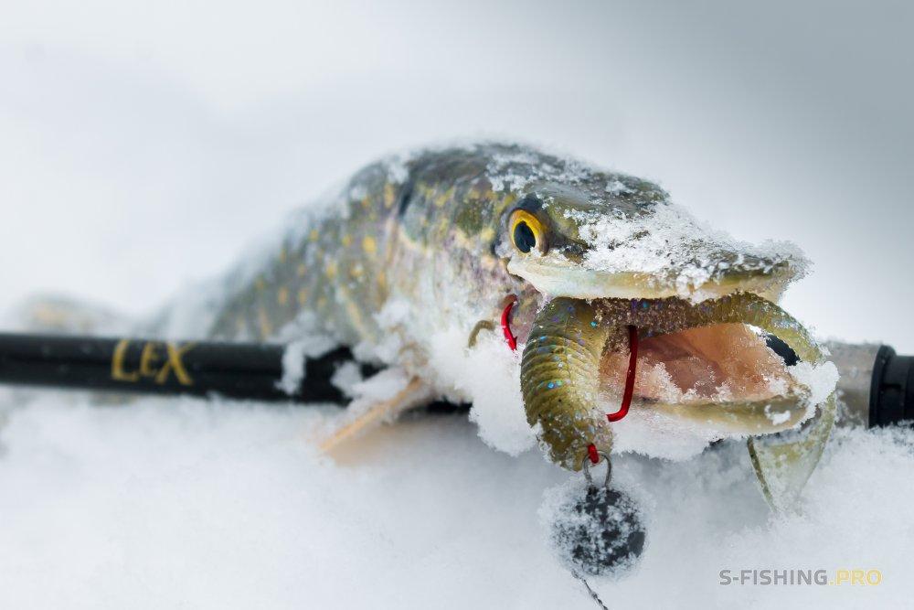 Отчеты с водоемов: Первая рыбалка со спиннингом в новом году