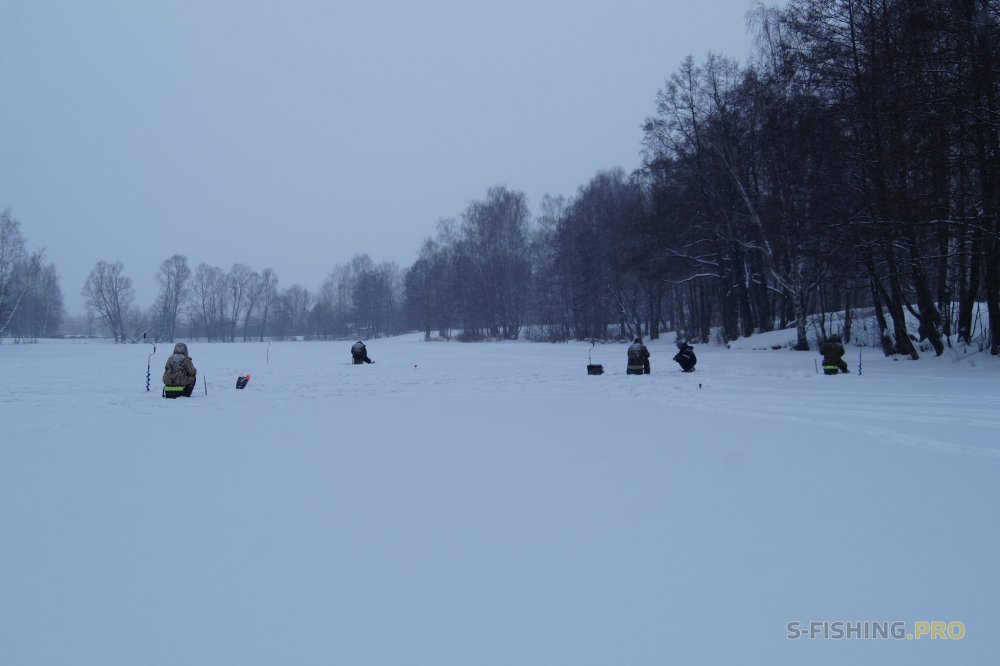 Блог им. ul_nn: В канун новогодних праздников