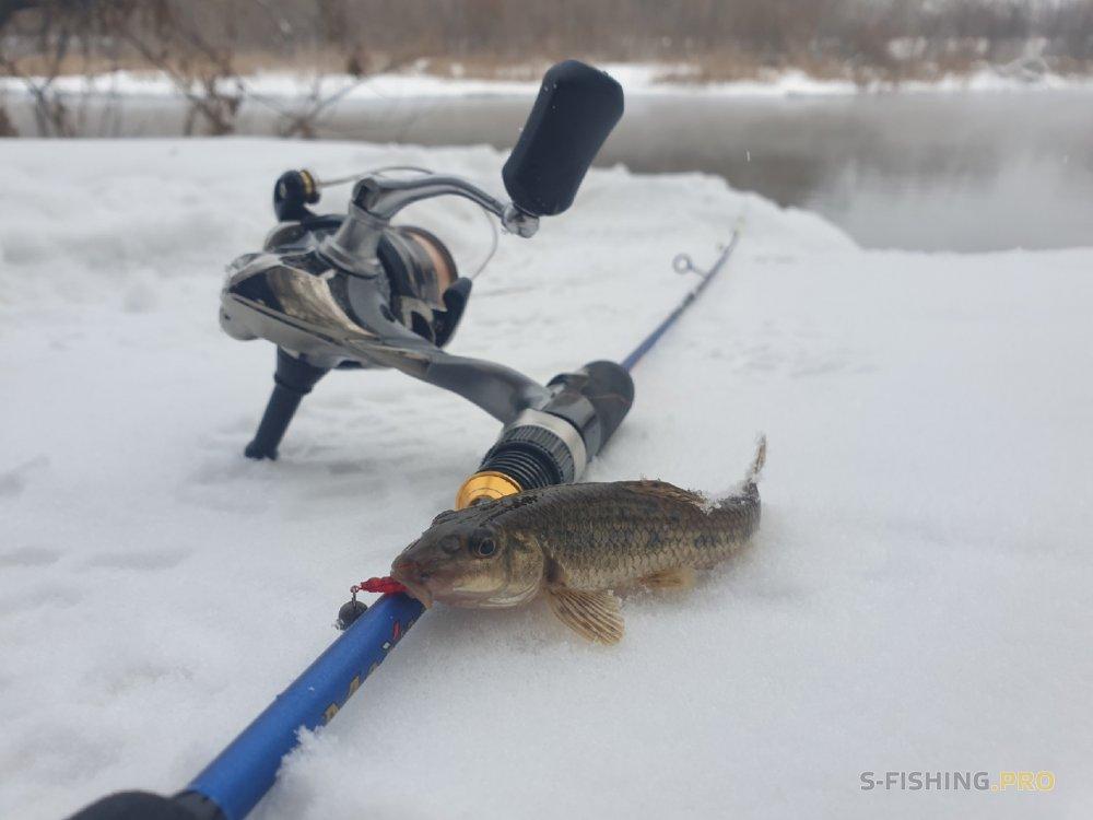 Отчеты с водоемов: Рыбалка после длительного перерыва