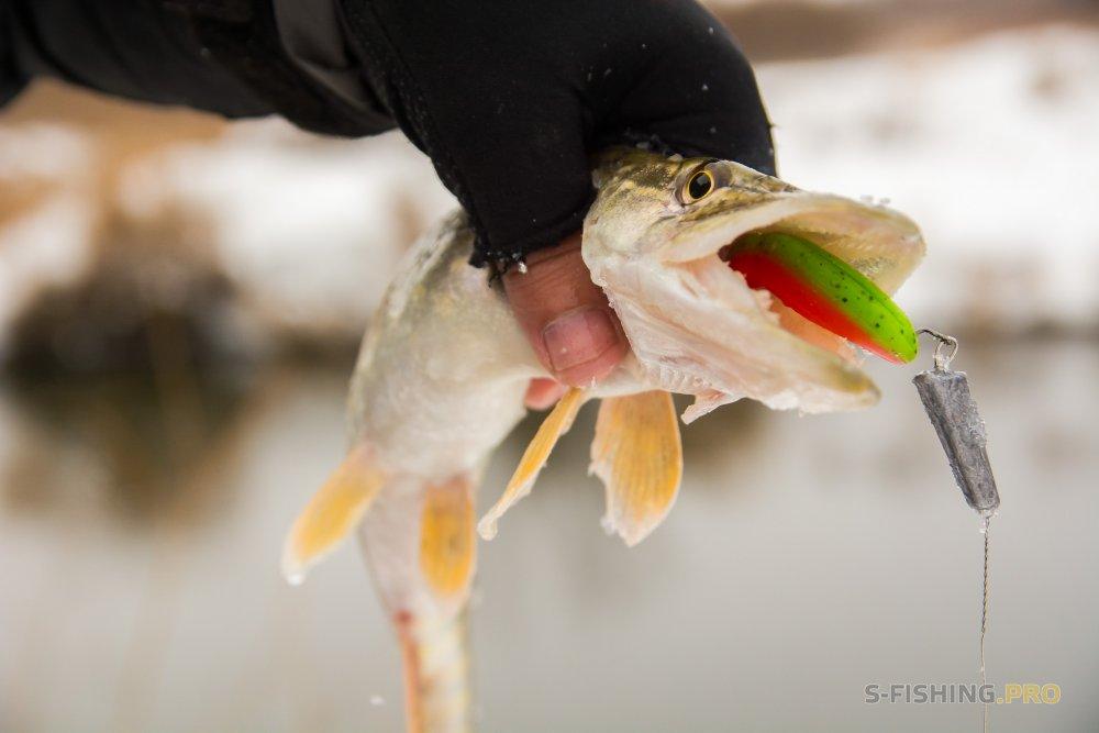 Отчеты с водоемов: Лучшая погода для ловли щуки зимой — снегопад.