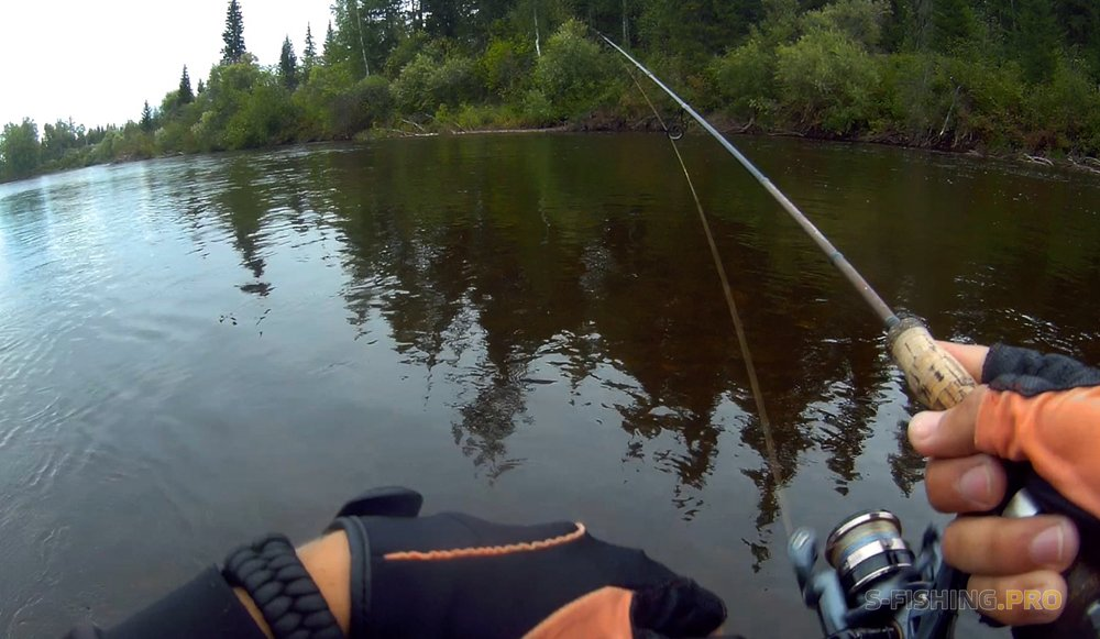 Отчеты с водоемов: Трофейный ленок и таймешонок на ультралайт. Рыбалка лета 2018.