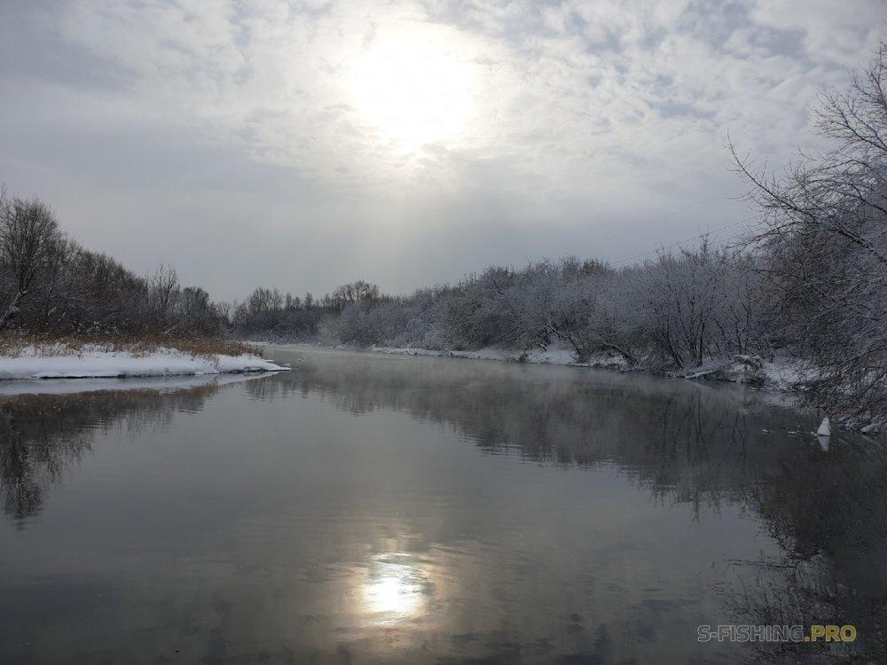 Отчеты с водоемов: День агрессивных проводок