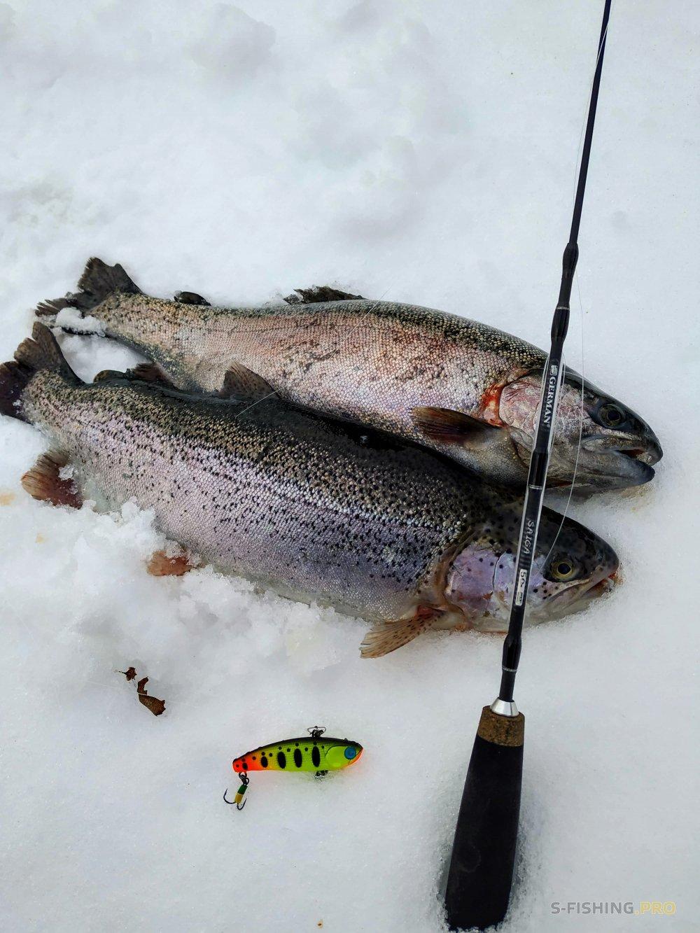 Отчеты с водоемов: Зимняя ловля форели: раттлины GERMAN Warden, GERMAN Kaidzu