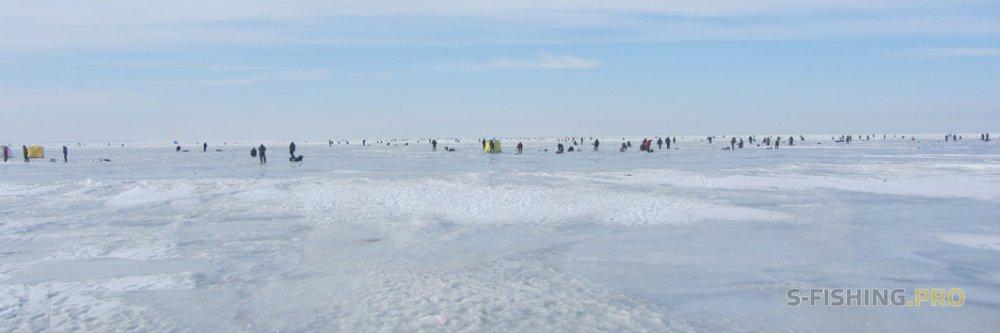Блог им. Lempaa: Подвижка льда на Финском заливе.