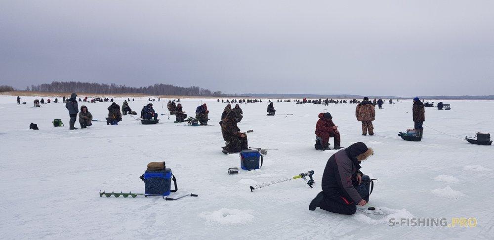 Отчеты с водоемов: Пять дней рыбалки, два водоема, 3 места ловли...