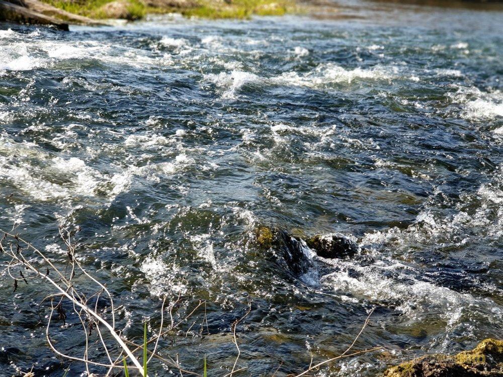 Отчеты с водоемов: Вызов принят. Охота на коней перезагрузка. )))