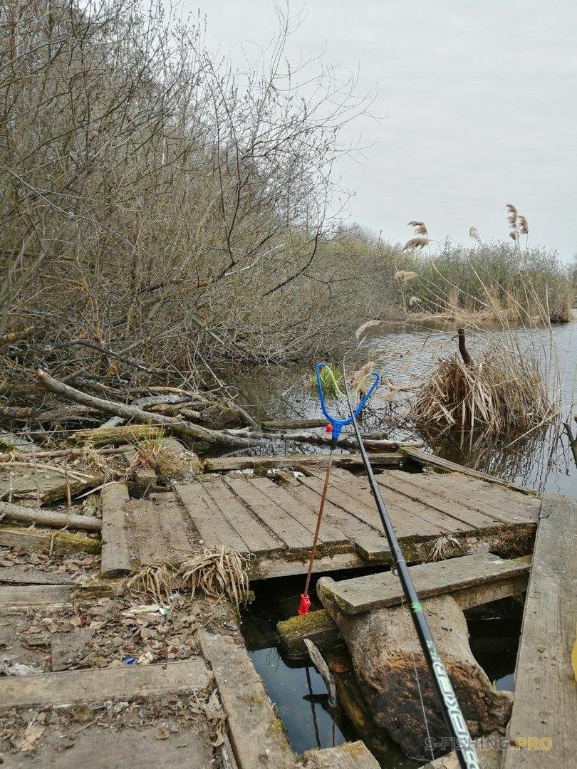 Отчеты с водоемов: Первая попытка ловли на фидер.