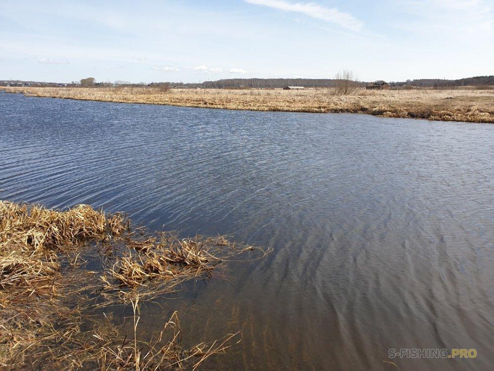 Отчеты с водоемов: Субботний микроджиговый выезд