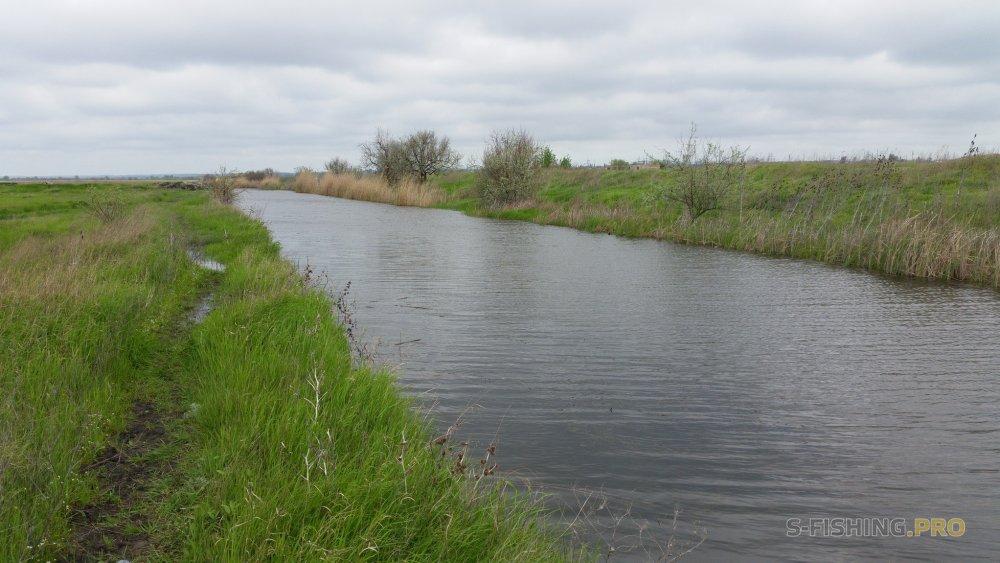 Отчеты с водоемов: Окунь вперемешку с щукой