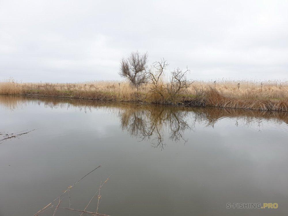 Отчеты с водоемов: В гостях и на рыбалку